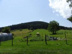 Le Puy de Monténard - Saulzet-le-Froid