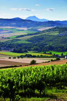 AOC Côtes d'Auvergne - carte