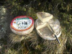 Mond'Arverne - liste des producteurs de fromages
