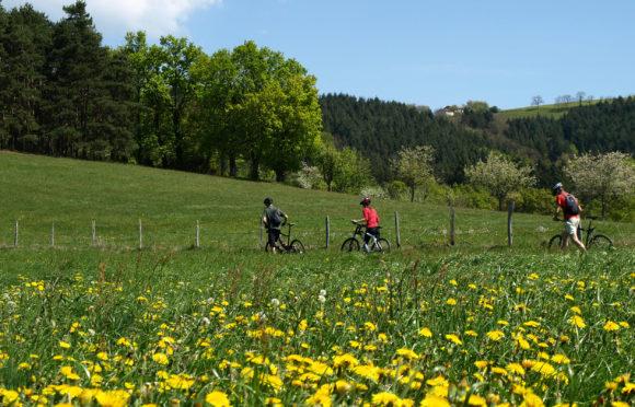 Mountain Bike ride in the Livradois Forez - planetepuydedome.com©
