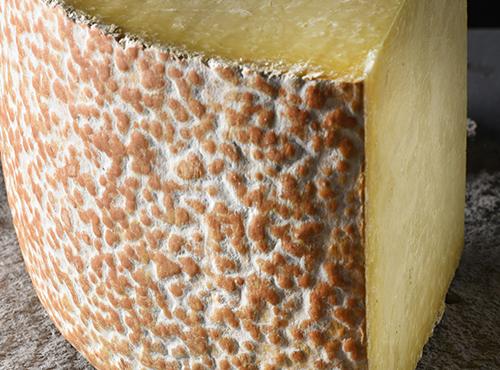 Cantal Fromage AOP d'Auvergne - J. Damase Auvergne-Rhône-Alpes Tourisme