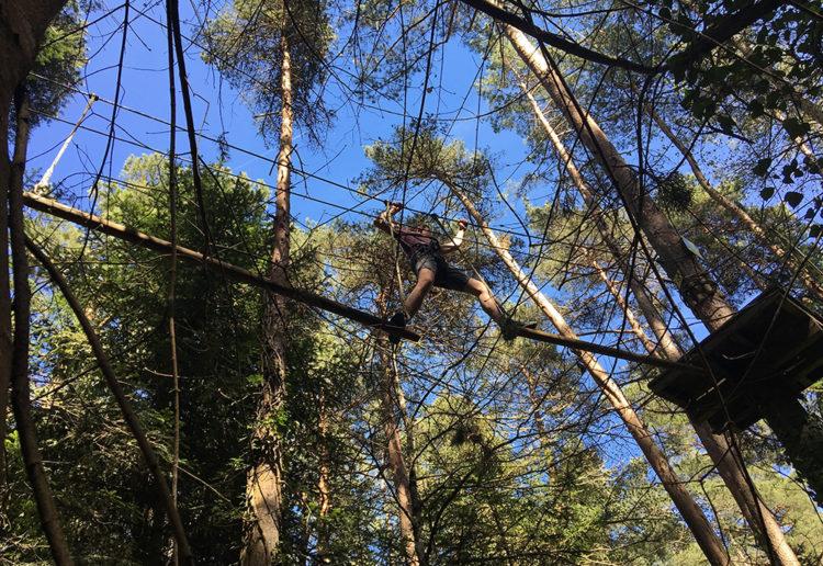 Accrobranche dans la forêt d'Aydat - Julien SOULIER