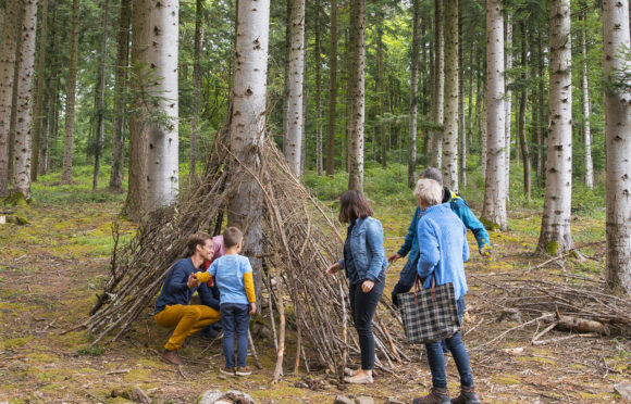 Forêt de la Comté - Mond'Arverne - CANOPEE